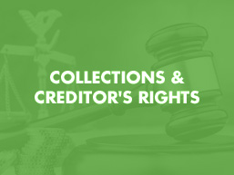 Collections & Creditor's Rights