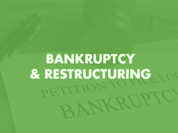 Bankruptcy & Restructuring